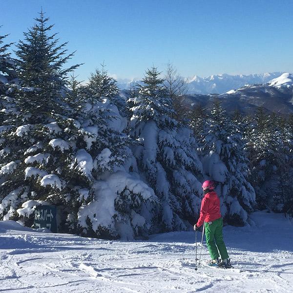 ski_sq